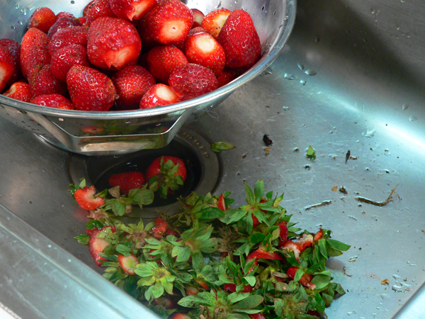 Remove the tops from all the Strawberries.