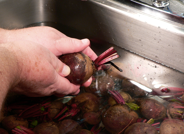 Pickled Beets, scrub gently with your fingers.