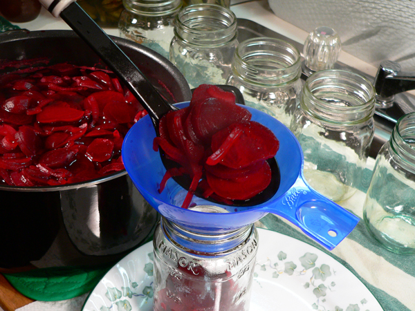 Pickled Beets, spon the beets into the jar.