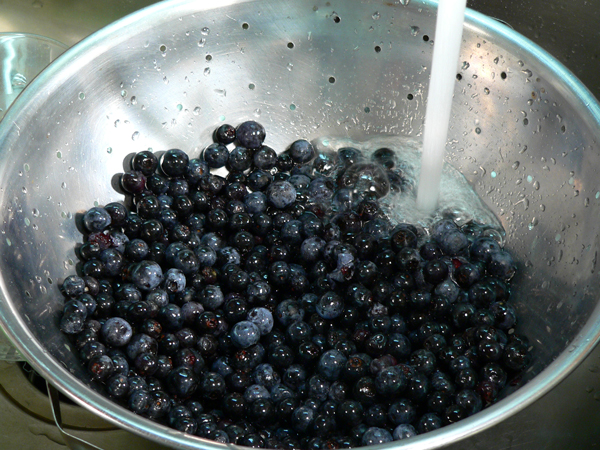 Blueberry Pie, prepare the berries.