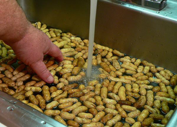 Boiled Peanuts, wash-well.