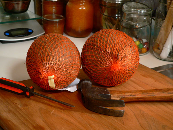 coconut, ingredients and tools
