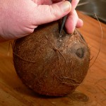 coconut, screwdriver in hand.