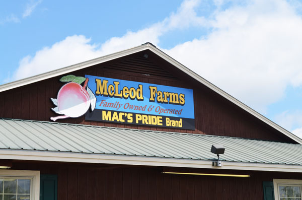 Squash Fritters Recipe, McLeod Farms sign.