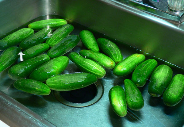 Bread-and-Butter-Pickles_02_wash
