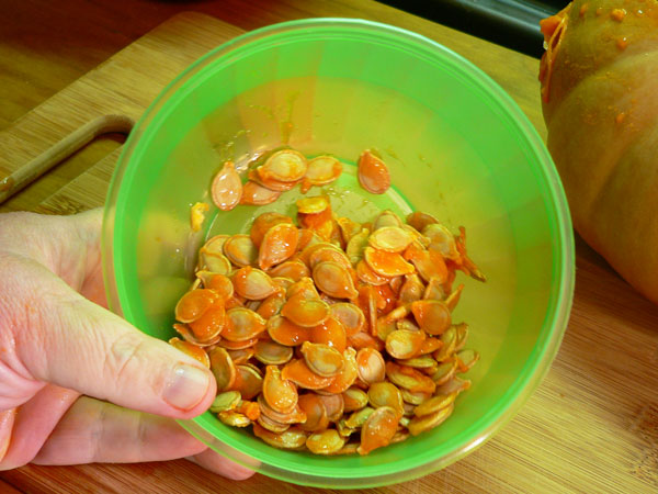 Pumpkin Pie, save the seeds.