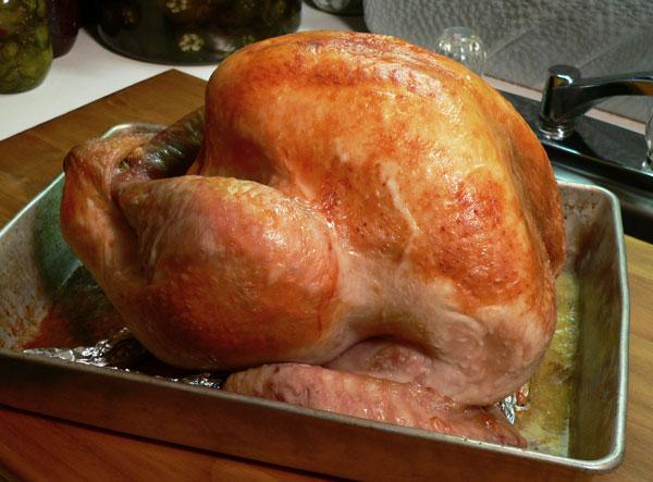 Roast Turkey, after one hour.