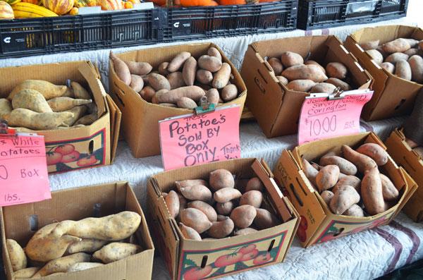 Turnip Greens, sweet potatoes.