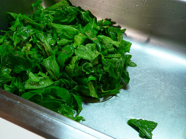 Turnip Greens, drain and repeat.