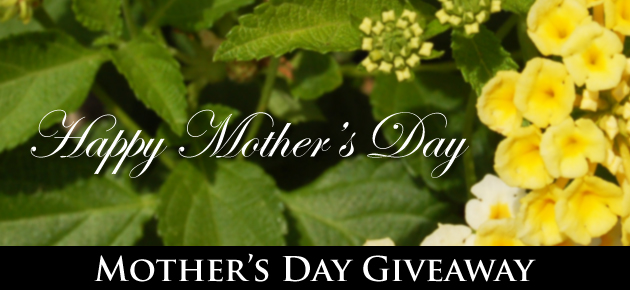 Mother's Day Giveaway, slider.