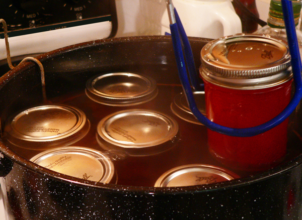 Cinnamon Pickles, place in canning pot.