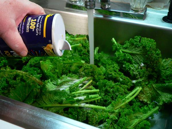 Mustard Greens Recipe, add salt to your wash water.