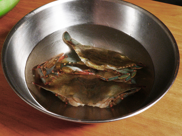Soft Shell Crab, place the crabs in a bowl of water.