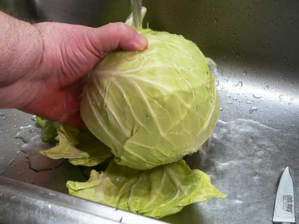 Corned Beef and Cabbage, rinse the cabbage under cool running water.