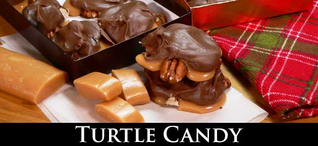 Turtle Candy, slider.