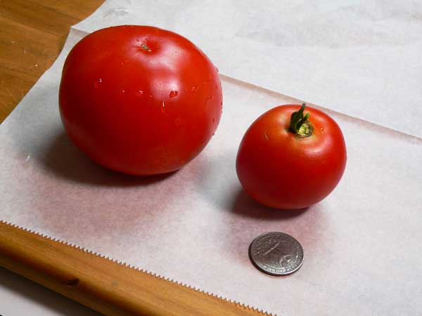 Tomato Sandwich, tomato.