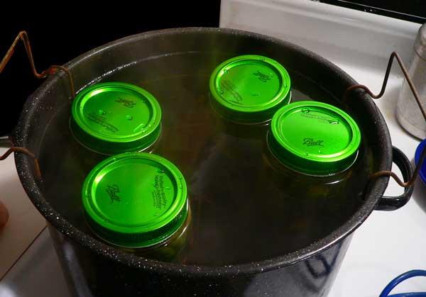 Pickled Okra, raise the jars.