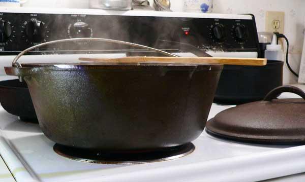 Chicken Noodle Soup, dutch oven.